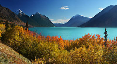 Photograph - Autumn Tutshi Lake by John Poon