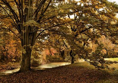 Autumn Landscape Digital Art - Autumn Umbrella by Jessica Jenney
