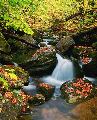 Vermont Wilderness Photograph - Autumn View by Aron Kearney