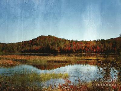 Photograph - Autumn View Of Lake And Trees by Aimelle
