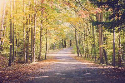 Fall Photograph - Autumn Walk by Sara Frank