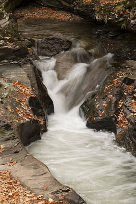 Photograph - Autumn Water by Gouzel -