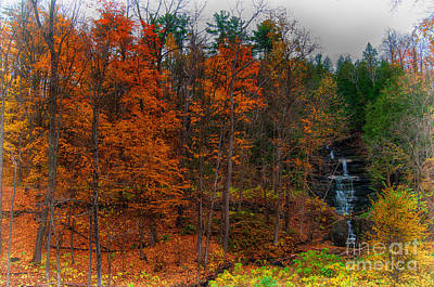 Photograph - Autumn Waterfall by Bianca Nadeau