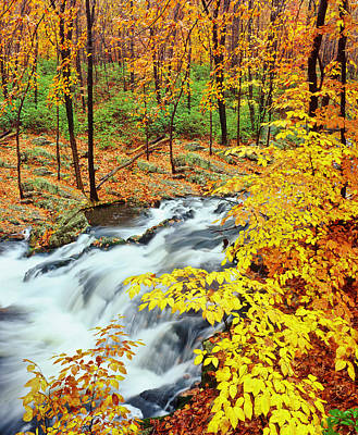 Photograph - Autumn Waterfall In New York by Ron thomas