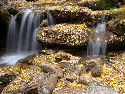 Photograph - Autumn Waterfall by Jenessa Rahn