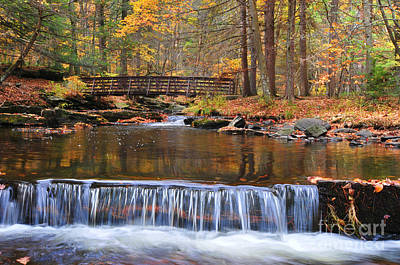 Autumn Waterfalls Art Print by Paul Ward