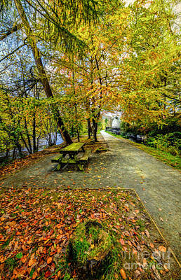 Picnic Digital Art - Autumn Way by Adrian Evans
