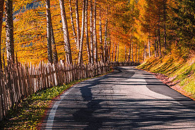 Autumn Way Art Print