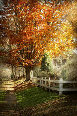 Suburbanscenes Photograph - Autumn - Westfield Nj - I Love Autumn by Mike Savad