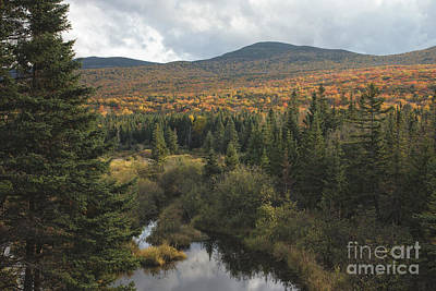 Autumn - White Mountains New Hampshire Art Print by Erin Paul Donovan