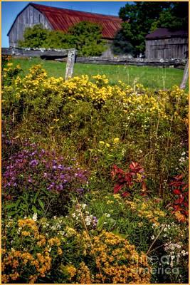 Split Rail Fence Photograph - Autumn Wildflowers by Henry Kowalski