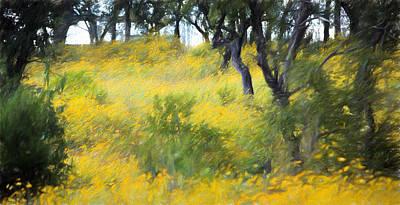 Autumn Wildflowers In Woods Original by Linda Phelps