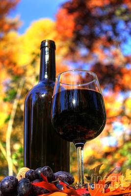 Vino Photograph - Autumn Wine 2 by Jimmy Ostgard