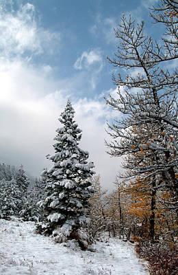 Autumn Winter Colors 2 Art Print