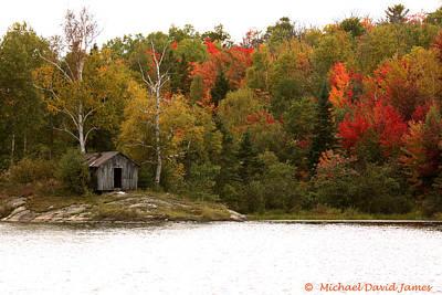 Autumn Woods Art Print by Michael David James