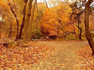 Bath Time - Autumn Woods by Miriam Danar