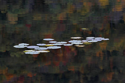 Vermont Photograph - Autumn Zen by Juergen Roth