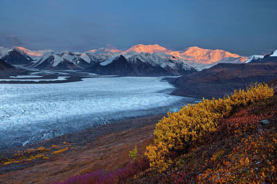 Icy Photograph - Autumn's Last Light by Doug Roane