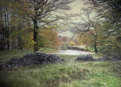 Autumnal Colours Near Fernilee Reservoir Art Print