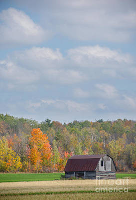 Photograph - Autumnal Countryside by Cheryl Baxter