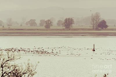 Autumnal Dreamland Iv Art Print