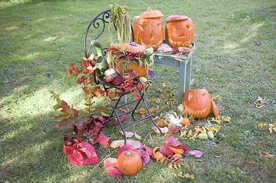 Autumnal Garden Decoration With Pumpkins, Flowers And Leaves Art Print