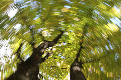 Photograph - Autumnal Spin by John Meader