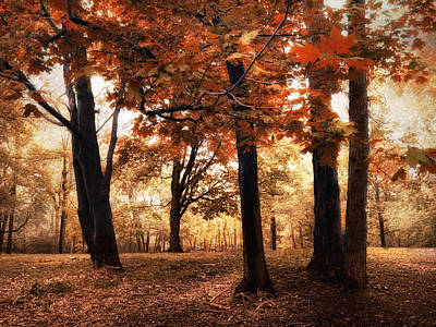 Red Leaf Digital Art - Autumnal Woodland by Jessica Jenney
