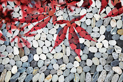 Red Leaves Photograph - Autumnal Zen by Delphimages Photo Creations