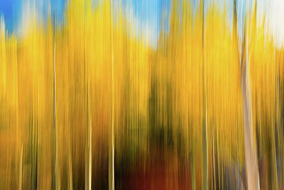 Photograph - Autumns Blurred Lines by Photo By Sam Scholes