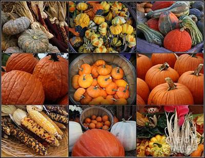 Autumn's Bounty Original by Dora Sofia Caputo Photographic Art and Design