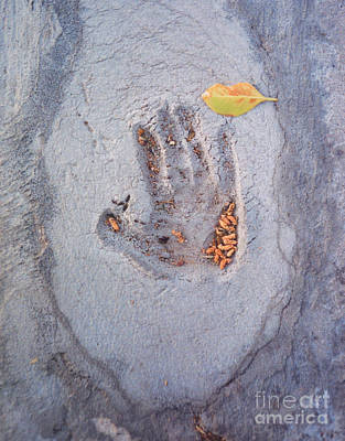 Photograph - Autumn's Child - Hand In Concrete by Heather Kirk