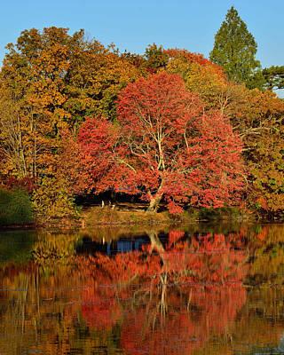 Belmont Lake State Park Wall Art - Photograph - Autumn's End by John R Ward