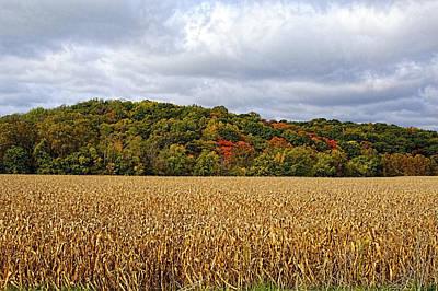 Photograph - Autumn's Gift by Deb Buchanan
