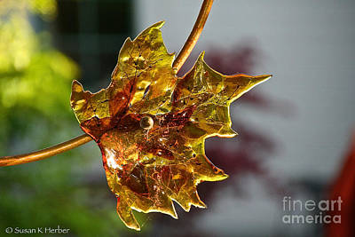 Photograph - Autumn's Glass by Susan Herber
