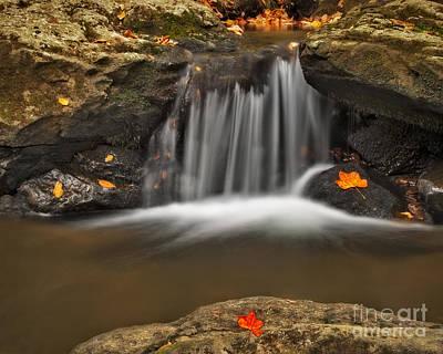 Photograph - Autumns Stream by Susan Candelario