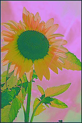 Autumn's Sunflower Pop Art Art Print