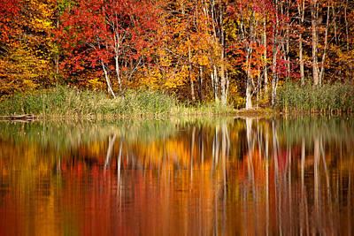 Autumns True Colors Art Print