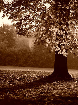 Photograph - Autumns Welcome by Miguel Winterpacht
