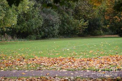 Autumn's Wondrous Colors 6 Art Print by Carol Lynch