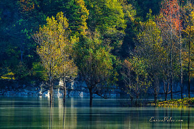 Photograph - Autunno Alba Sul Lago - Autumn Lake Dawn 9711 by Enrico Pelos