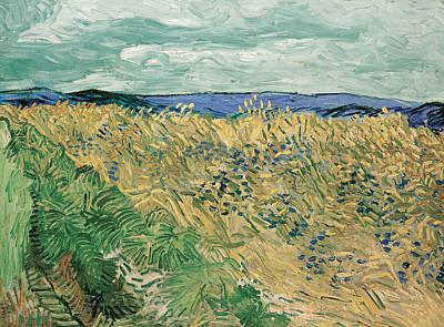 Corn Painting - Auvers Sur Oise by Vincent van Gogh
