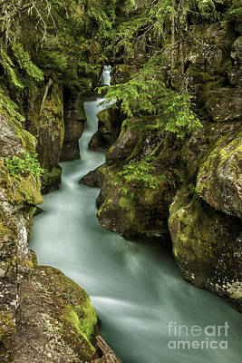 Chasm Lake Photograph - Avalanche Creek - Glacier National Park Montana by Thomas Schoeller