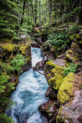 Photograph - Avalanche Creek by Jim McCain