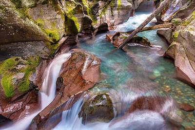 Photograph - Avalanche Gorge 4 Of 4 by Adam Mateo Fierro