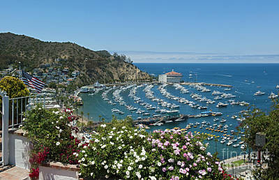 Photograph - Avalon Harbor Catalina Island Ca Casino Yachts 2 by David Zanzinger