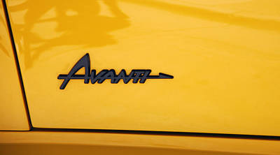 Photograph - Avanti Yellow by Morris  McClung