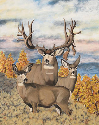 Avery Buck Art Print