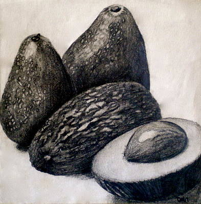 Tonal Painting - Avocados by Debi Starr