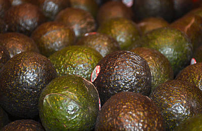 Photograph - Avocados by Robert Meyers-Lussier